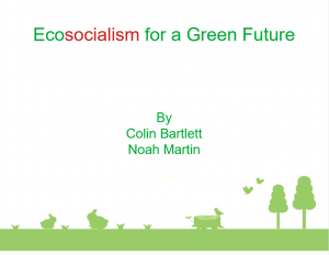 Ecosocialism for a Green Future